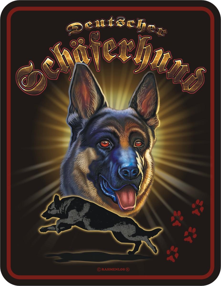 coole witzige lustige Sprüche Blechschild Schild Hunde ...
